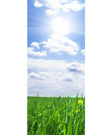 Grasveld zon