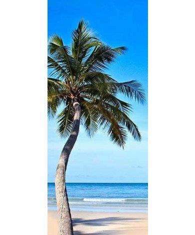 Palmboom strand
